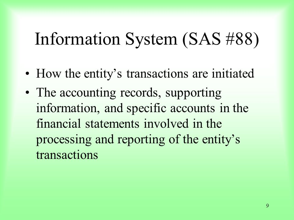 Information System (SAS #88)