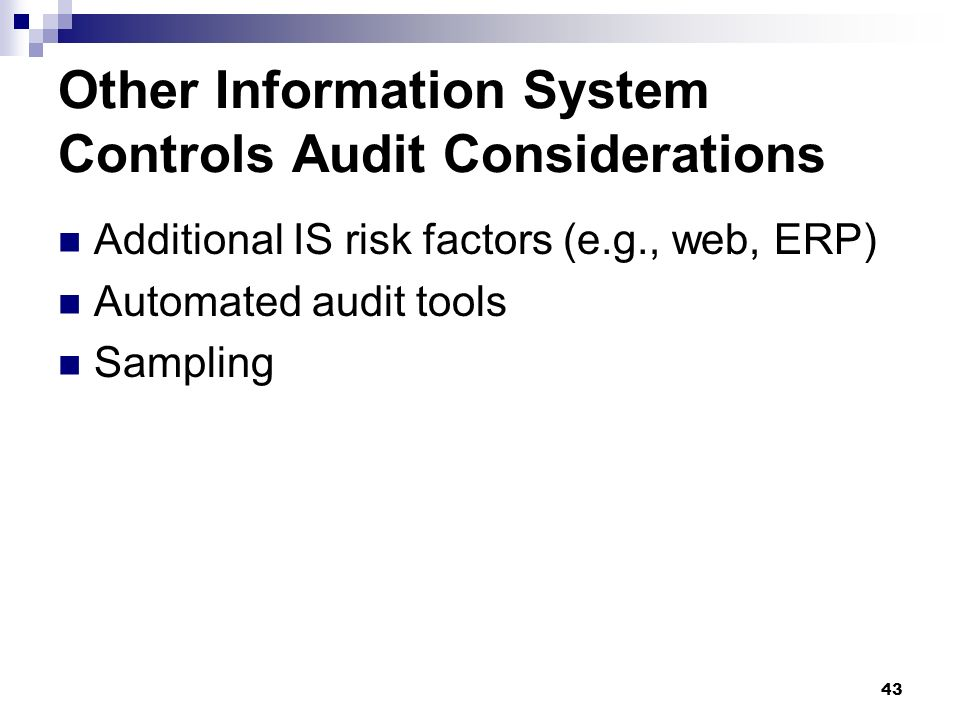 Other Information System Controls Audit Considerations
