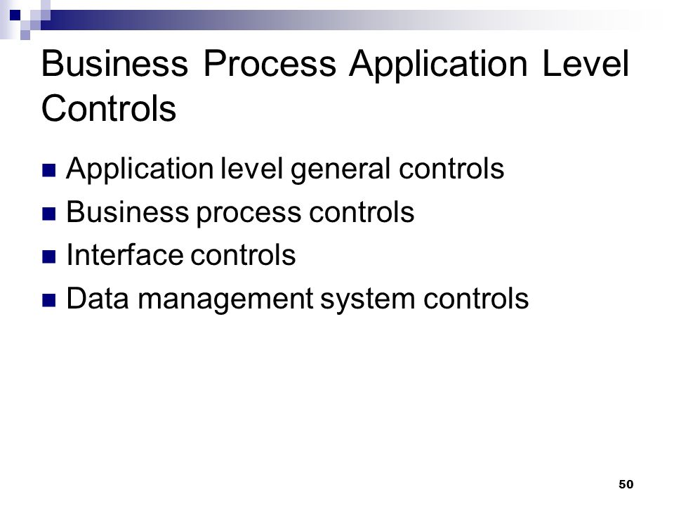 Business Process Application Level Controls