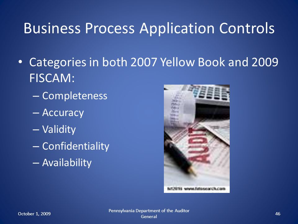 Business Process Application Controls