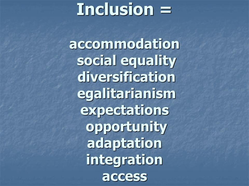 Inclusion = accommodation social equality diversification egalitarianism expectations opportunity adaptation integration access