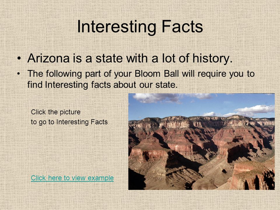 Interesting Facts Arizona is a state with a lot of history.