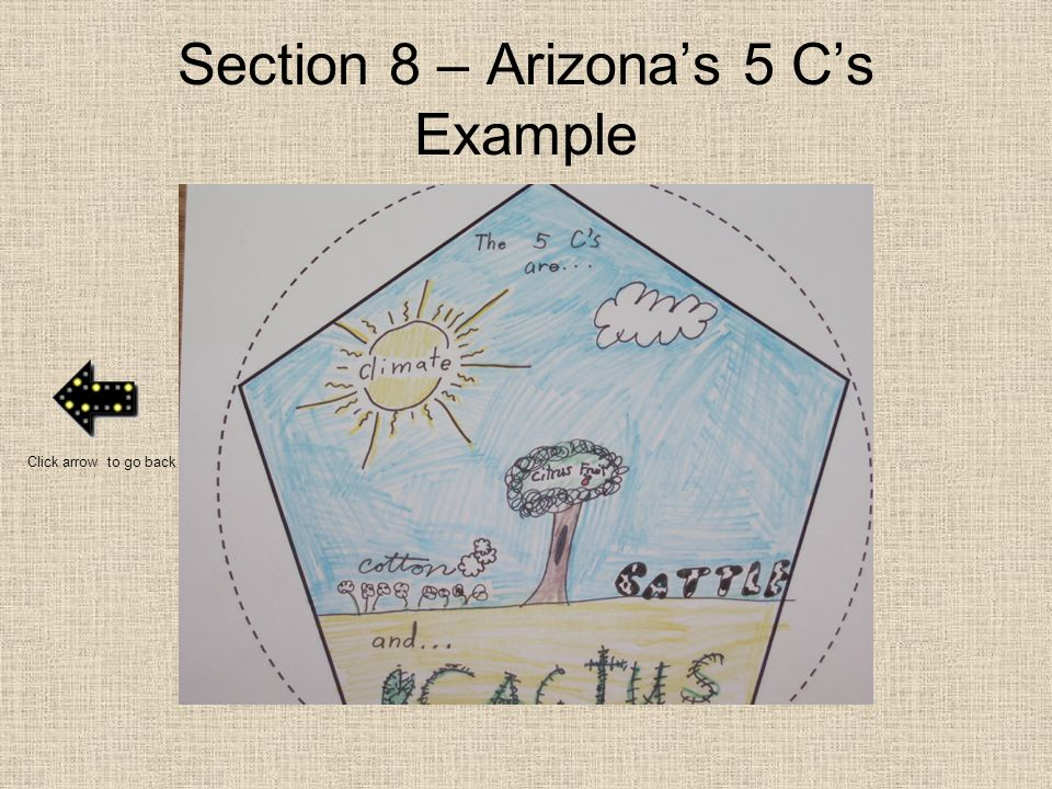 Section 8 – Arizona's 5 C's Example