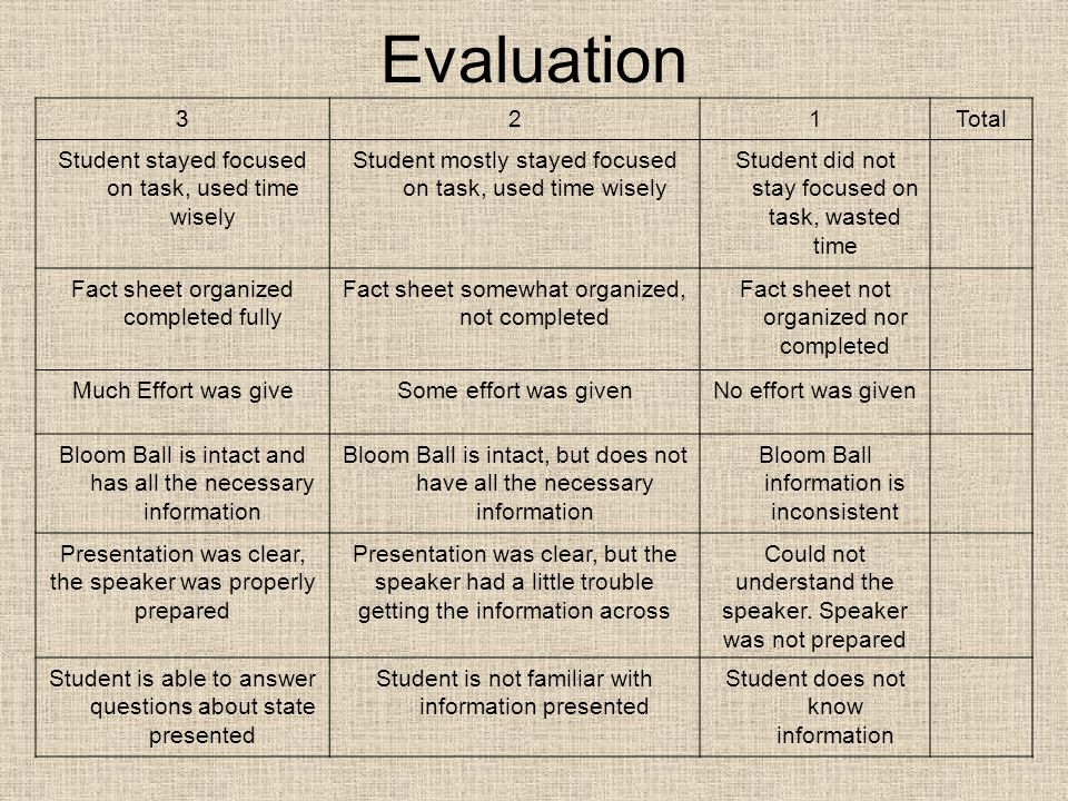 Evaluation 3. 2. 1. Total. Student stayed focused on task, used time wisely. Student mostly stayed focused on task, used time wisely.