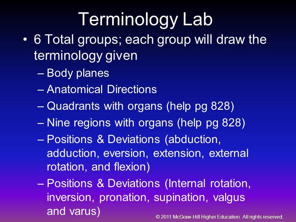 Terminology Lab 6 Total groups; each group will draw the terminology given. Body planes. Anatomical Directions.