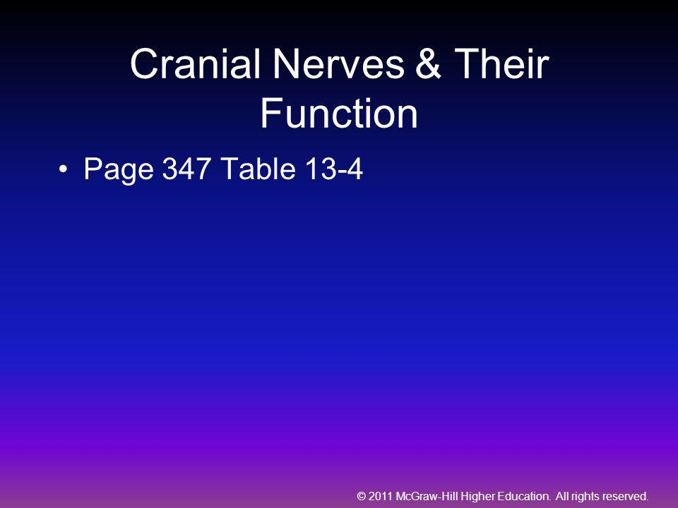 Cranial Nerves & Their Function