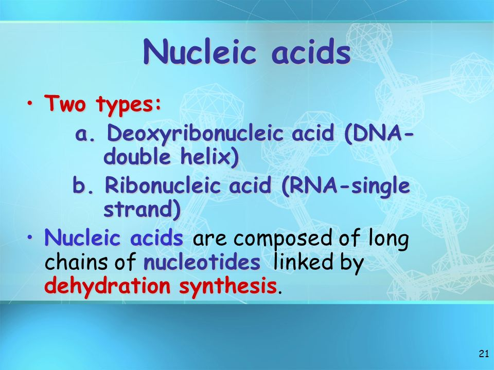Nucleic acids Two types: a. Deoxyribonucleic acid (DNA- double helix)