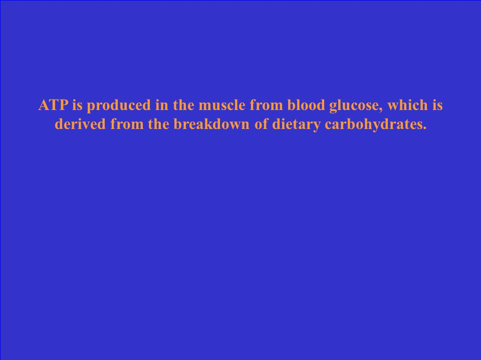 ATP is produced in the muscle from blood glucose, which is derived from the breakdown of dietary carbohydrates.