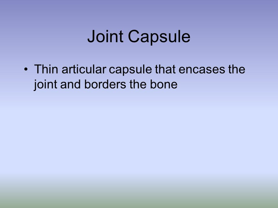 Joint Capsule Thin articular capsule that encases the joint and borders the bone