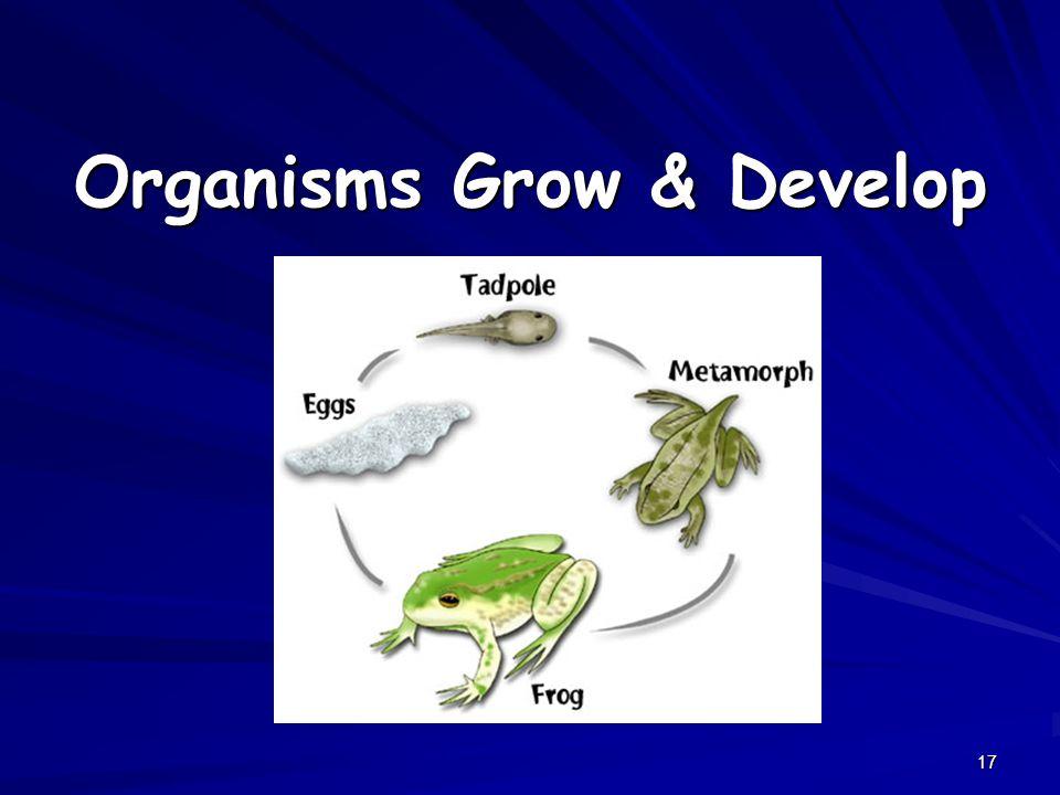 Organisms Grow & Develop