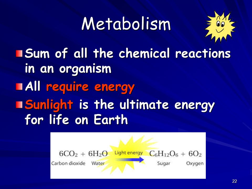 Metabolism Sum of all the chemical reactions in an organism