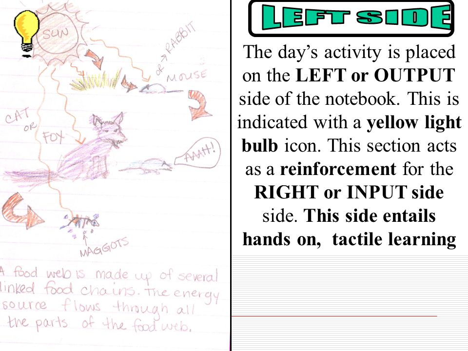 The day's activity is placed on the LEFT or OUTPUT side of the notebook. This is indicated with a yellow light bulb icon. This section acts as a reinforcement for the RIGHT or INPUT side side. This side entails hands on, tactile learning