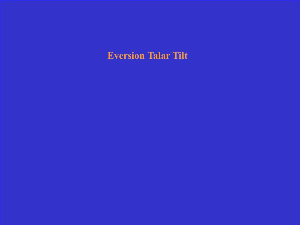 Eversion Talar Tilt