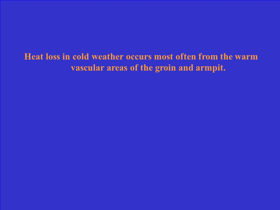 Heat loss in cold weather occurs most often from the warm vascular areas of the groin and armpit.