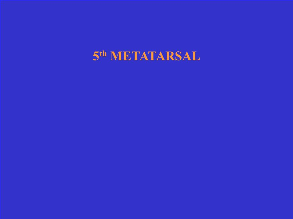 5th METATARSAL