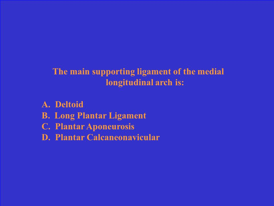 The main supporting ligament of the medial longitudinal arch is: