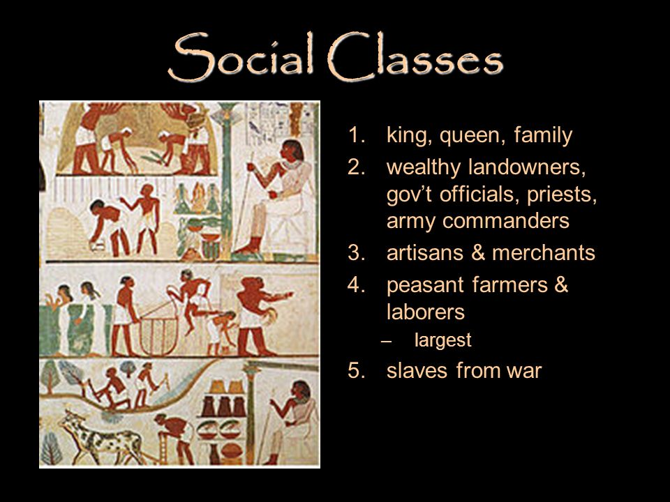 Social Classes king, queen, family