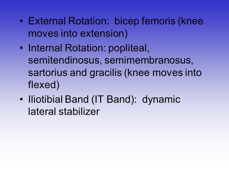 External Rotation: bicep femoris (knee moves into extension)