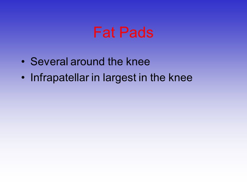 Fat Pads Several around the knee Infrapatellar in largest in the knee