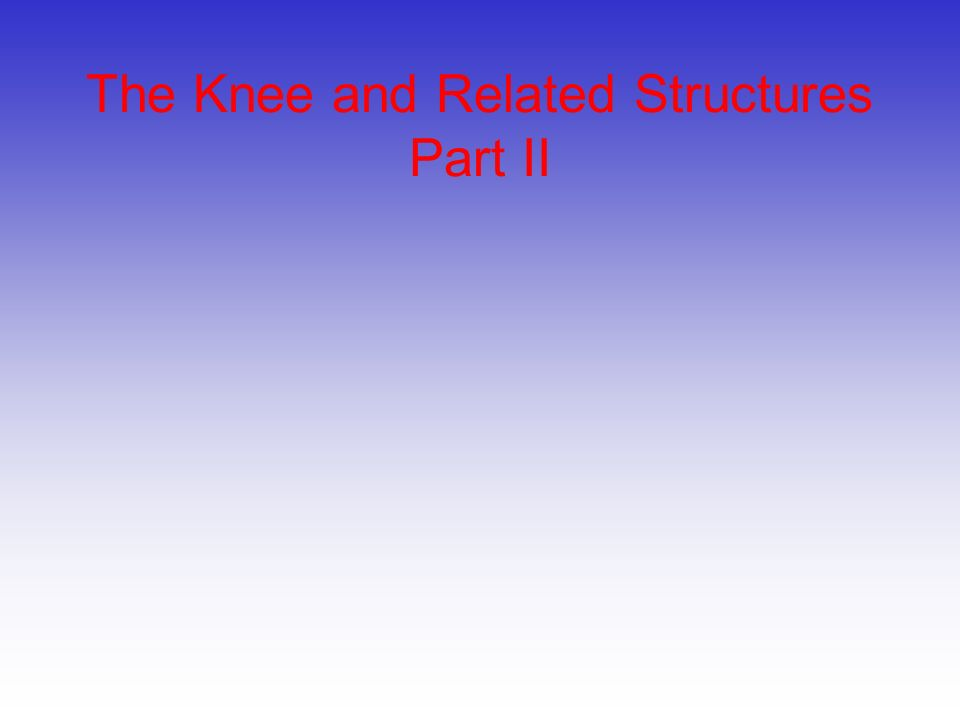 The Knee and Related Structures Part II