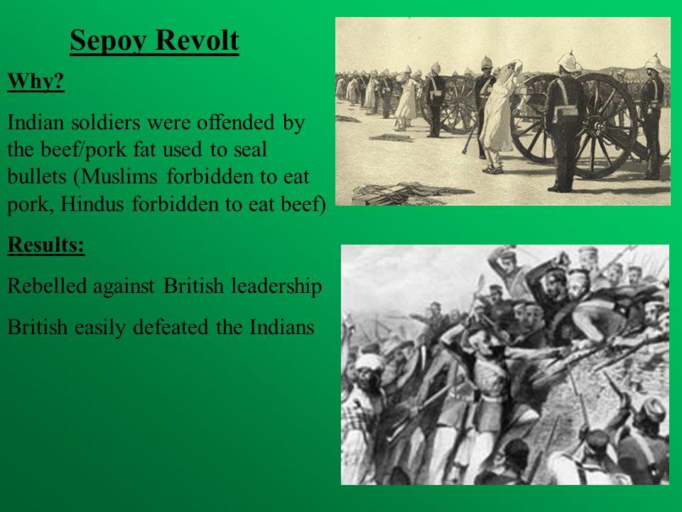 Sepoy Revolt Why