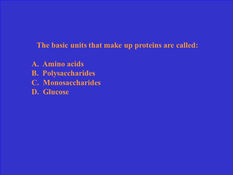 The basic units that make up proteins are called: