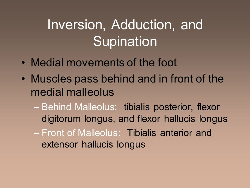 Inversion, Adduction, and Supination