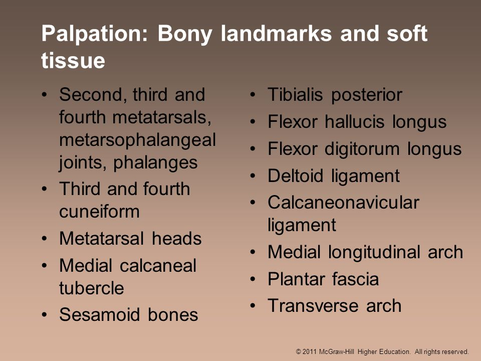 Palpation: Bony landmarks and soft tissue