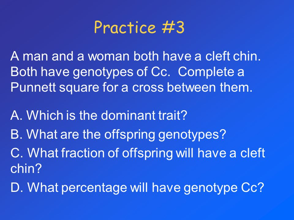 Practice #3 A man and a woman both have a cleft chin. Both have genotypes of Cc. Complete a Punnett square for a cross between them.