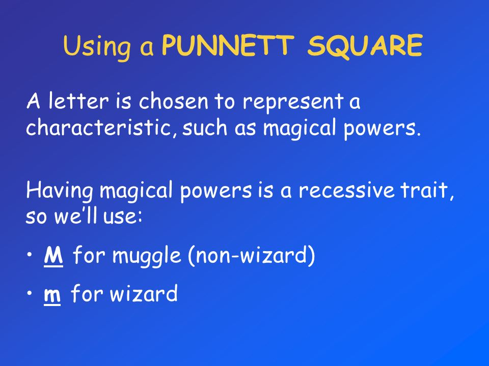 Using a PUNNETT SQUARE A letter is chosen to represent a characteristic, such as magical powers.