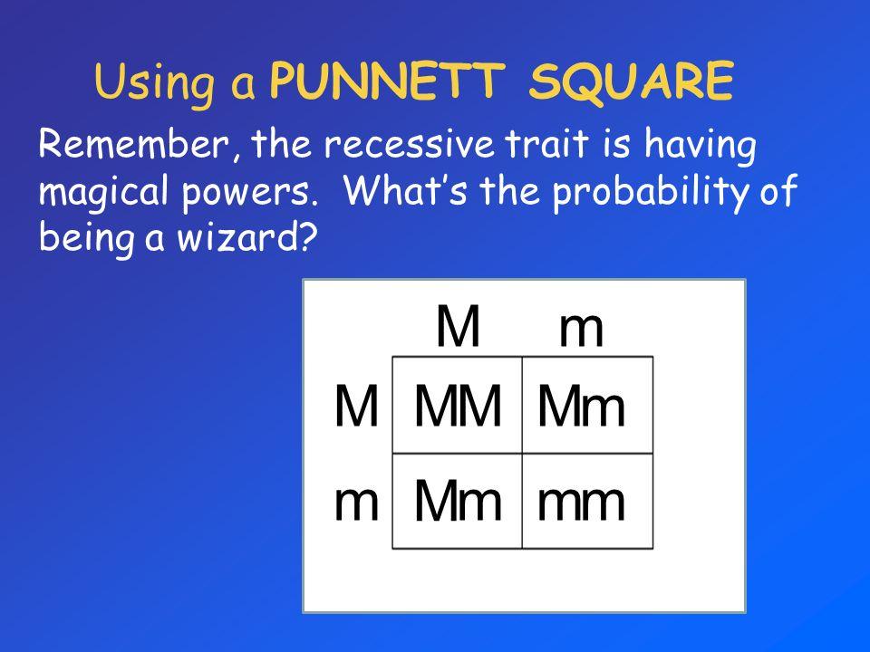 M m Using a PUNNETT SQUARE