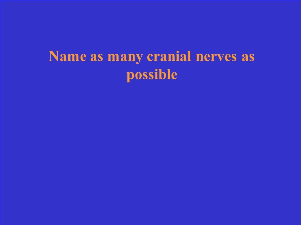 Name as many cranial nerves as possible