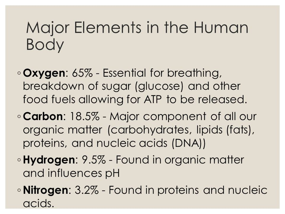 Major Elements in the Human Body