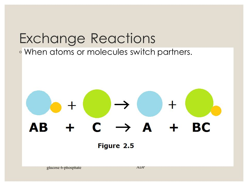 Exchange Reactions When atoms or molecules switch partners.
