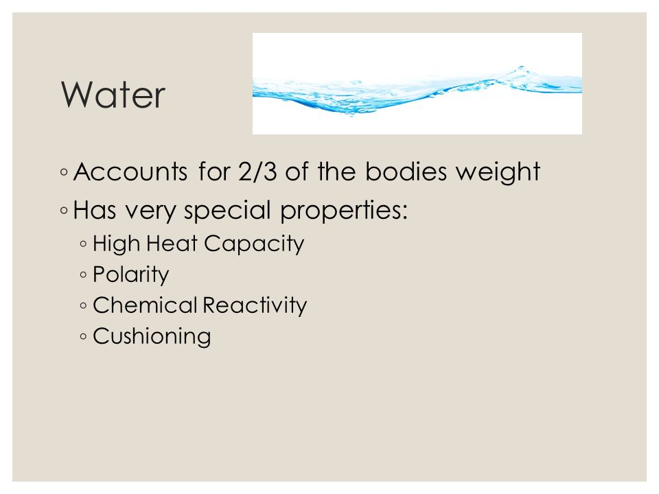 Water Accounts for 2/3 of the bodies weight