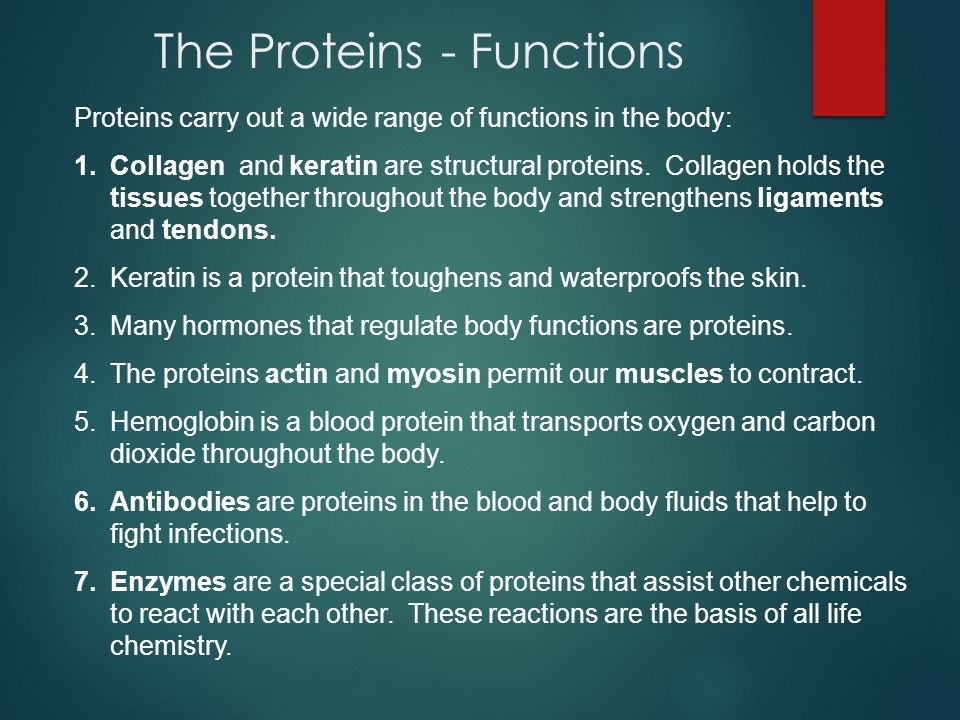 The Proteins - Functions