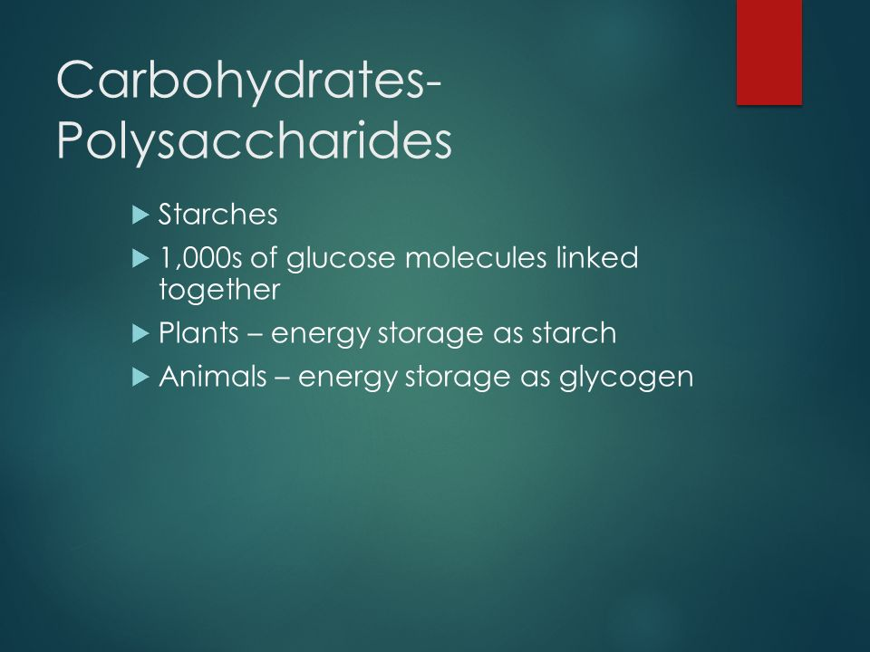 Carbohydrates- Polysaccharides