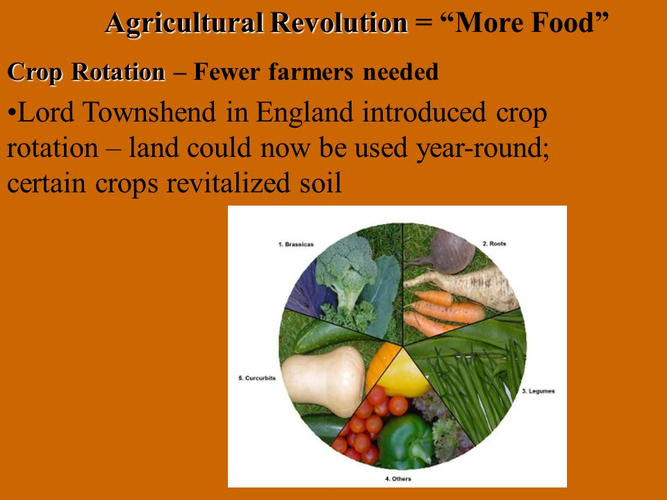 Agricultural Revolution = More Food