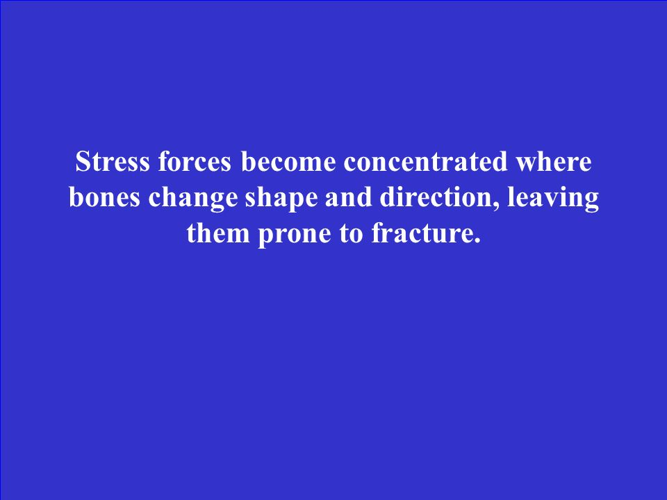 Stress forces become concentrated where bones change shape and direction, leaving them prone to fracture.
