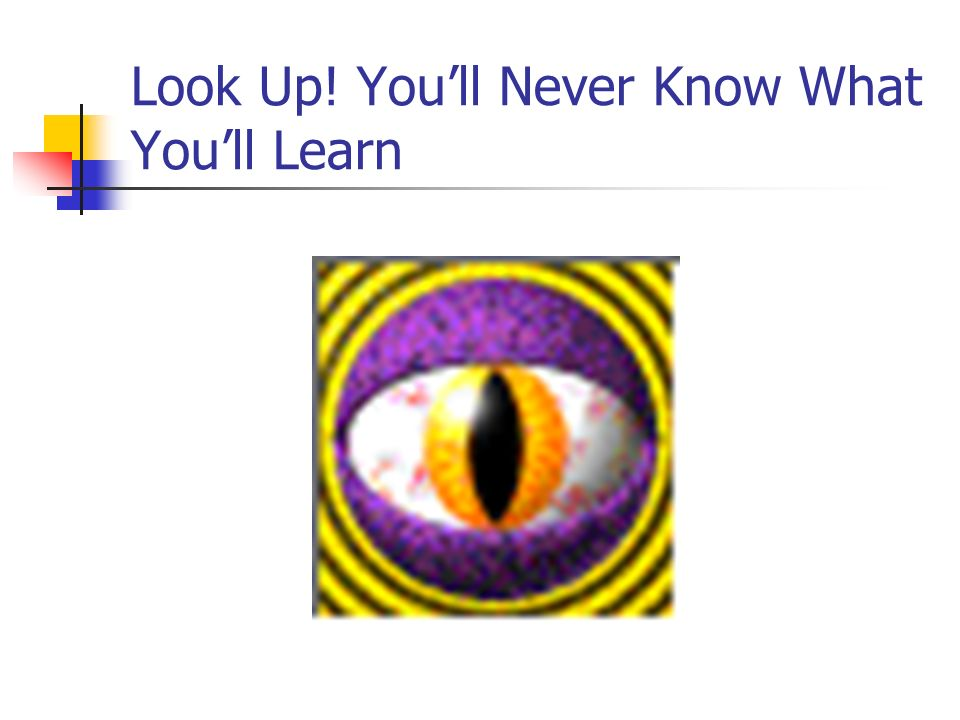 Look Up! You'll Never Know What You'll Learn