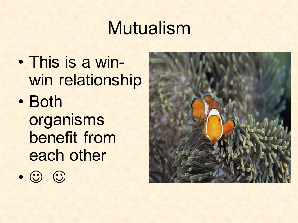 Mutualism This is a win-win relationship