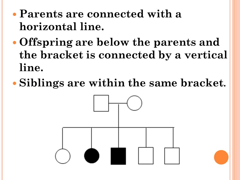 Parents are connected with a horizontal line.