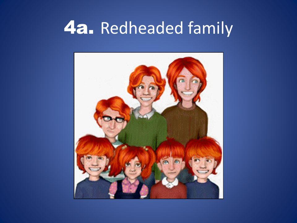 4a. Redheaded family