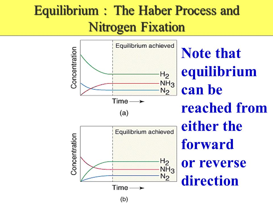 Equilibrium : The Haber Process and