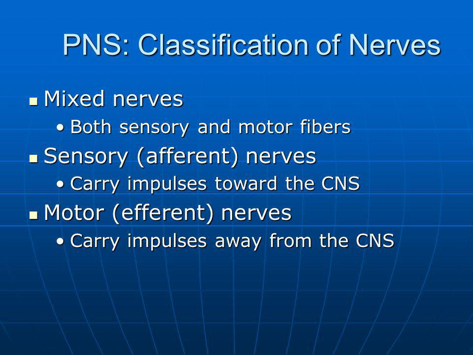 PNS: Classification of Nerves