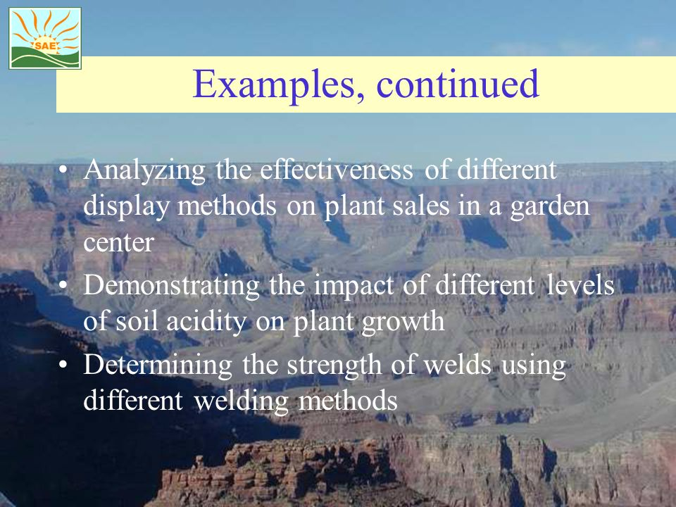 Examples, continued Analyzing the effectiveness of different display methods on plant sales in a garden center.