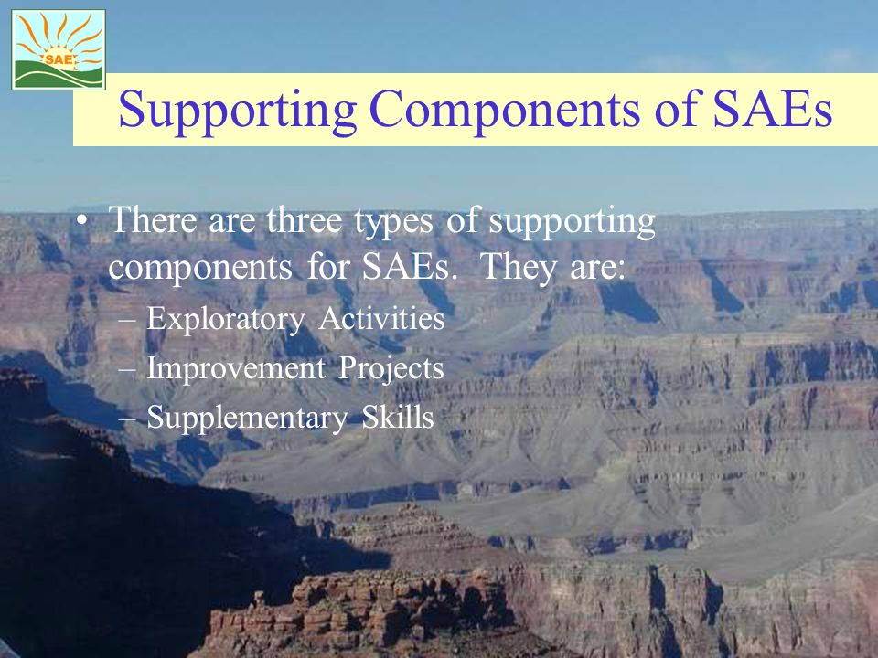 Supporting Components of SAEs
