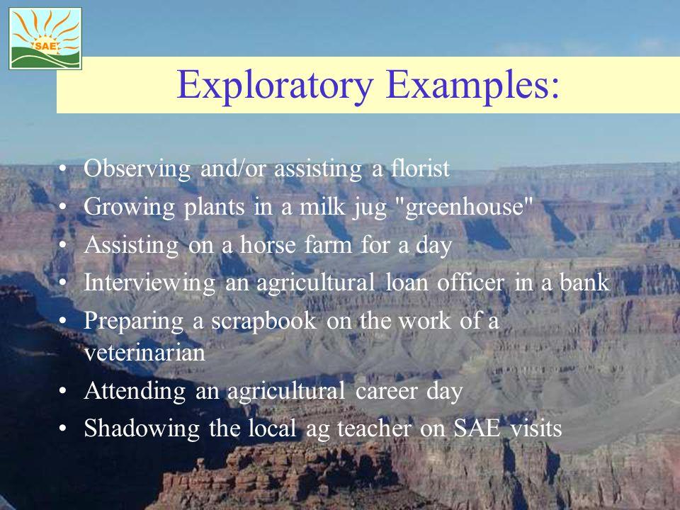 Exploratory Examples: