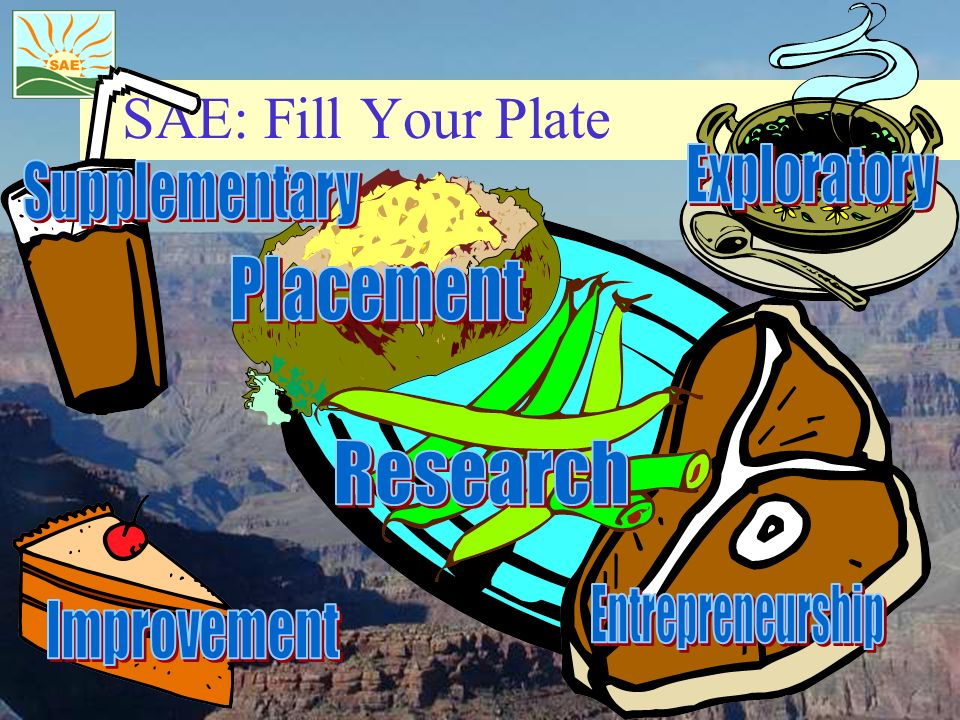SAE: Fill Your Plate Exploratory Supplementary Placement Research