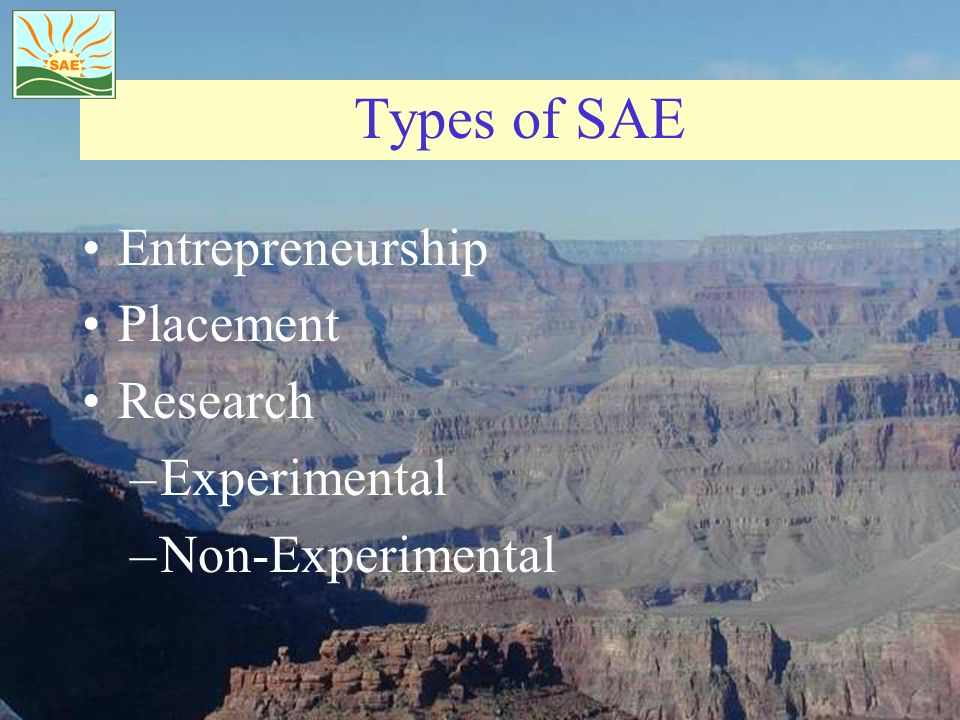 Types of SAE Entrepreneurship Placement Research Experimental